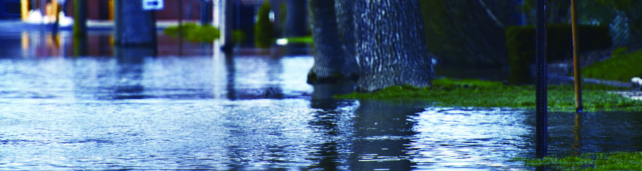 Close-up of a flooded street